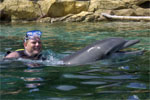 David getting a ride from Coral the Dolphin