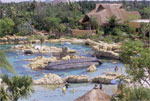 Overview of Discovery Cove
